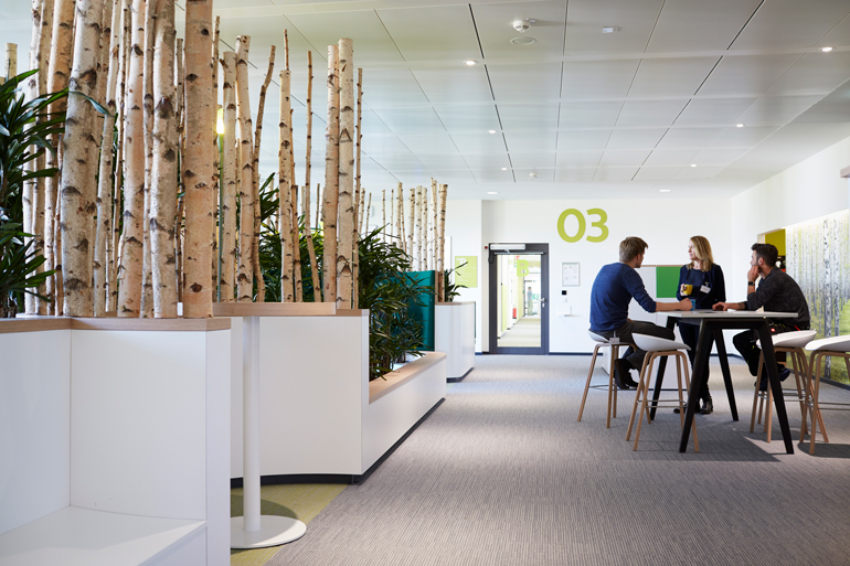 Cohesive Carpeting Unifies New Philips DACH Headquarters In