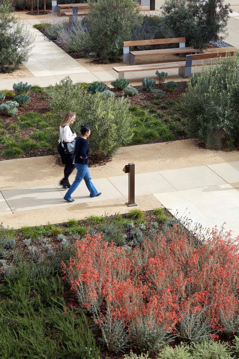 Nature and Nurture: NBBJ's Palo Alto Medical Foundation San Carlos