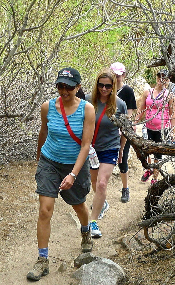 Guests At Interior Designs Giants Of Design Conference In Palm Springs California Went On A Hike As Part Tuesdays Afternoon Activities