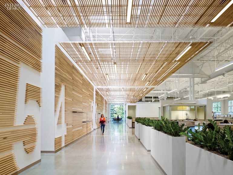Newell Rubbermaid Design Incubator By Eva Maddox